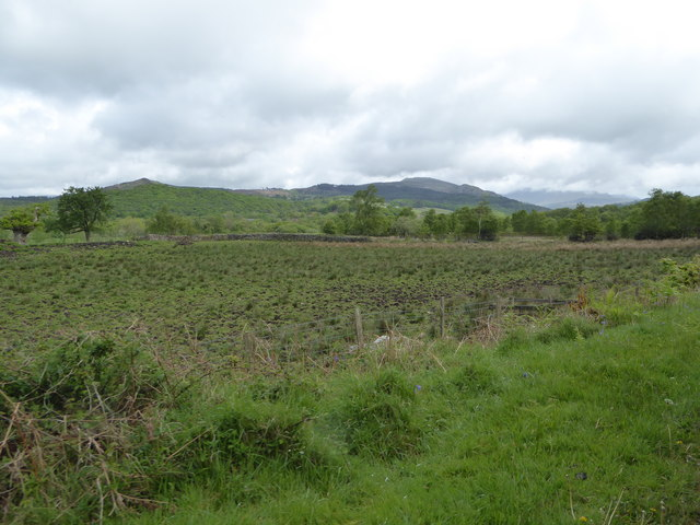 View north from the Ravenglass and Eskdale Railway