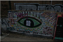 TQ3784 : View of street art on the River Lea towpath #2 by Robert Lamb