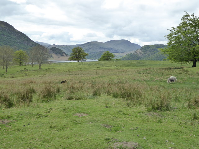 View towards Ullswater from the path to Aira Force
