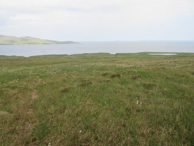 West coast of Jura grassland