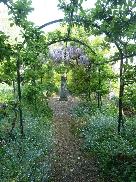 Pergola leading to statue and wisteria