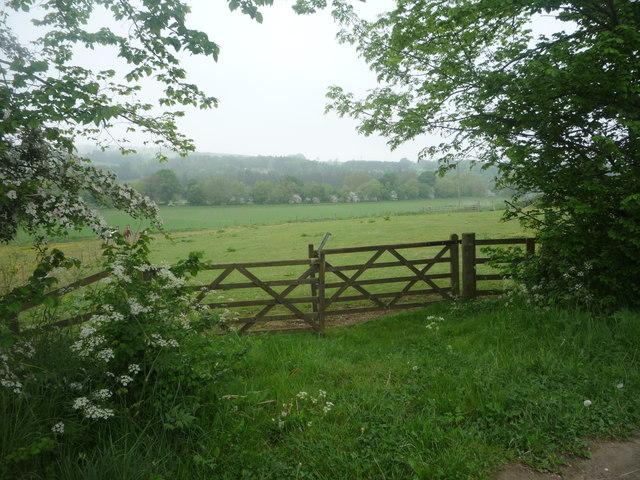 Field entrance near Red Hemmels Farm