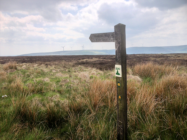Pennine Way Signpost, Longfield Common