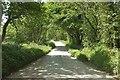 SS2708 : Lane near Lamberal Water by Derek Harper