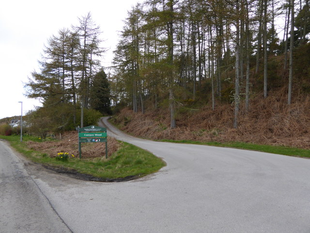 Access road to the forest park at Camore Wood