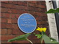 SO7875 : Blue Plaque, Lower Park, Bewdley by SK53