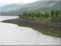 NN0858 : Alltan Mhic Aoidh by M J Richardson