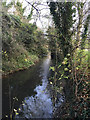 SP3780 : River Sowe north of Dorchester Way, Walsgrave, Coventry by Robin Stott