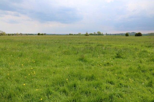 Clifton Meadow