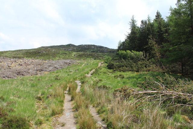 Trail to Cornish Loch
