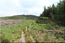 NX4095 : Trail to Cornish Loch by Billy McCrorie