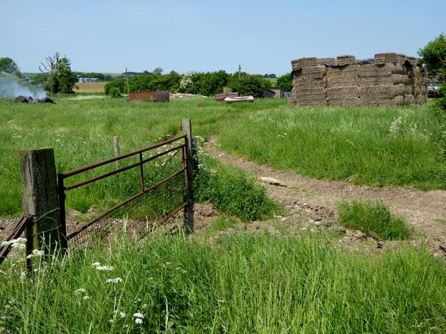 Near Manor Farm, Avebury