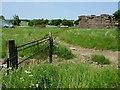 SU1170 : Near Manor Farm, Avebury by Oliver Dixon
