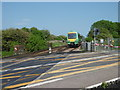 TQ6504 : A train approaching Pevensey Bay station by Marathon