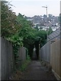 SZ0795 : Northbourne: a little way down footpath E42 by Chris Downer