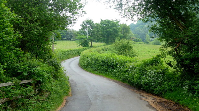 Lane in the Vale of Grwyney
