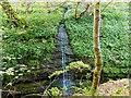 NH5966 : Black Rock Gorge by valenta
