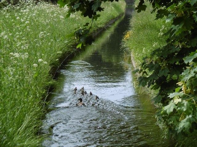 Whittledean Watercourse