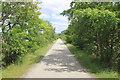 SH6718 : The Mawddach Trail by Jeff Buck