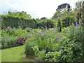 SW9040 : The gardens at Poppy Cottage Garden by Rod Allday