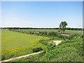 SU3790 : Fields and Railway at Circourt Bridge by Des Blenkinsopp