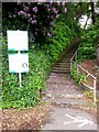 SZ0890 : Bournemouth: steps from the car park on footpath B20 by Chris Downer