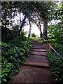 SZ0890 : Bournemouth: topmost steps on footpath B20 by Chris Downer