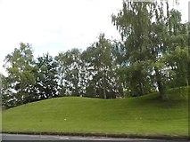 TQ8055 : Grassy knoll by Ashford Road by David Howard