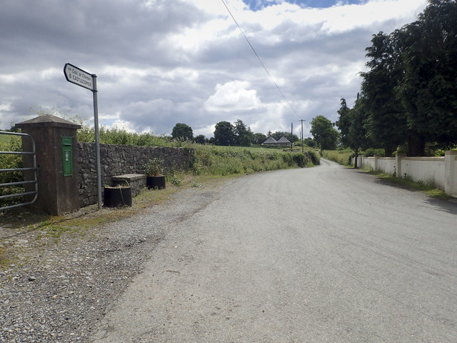 The road from Castlecomer