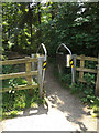 TM1840 : Entrance to Bridge Wood by Adrian Cable