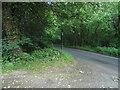 TR0349 : White Hill, Challock by David Howard