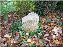 TQ0481 : Boundary stone by Rob Emms