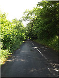 TM1154 : Cycleway to the A140 Norwich Road by Adrian Cable