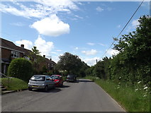 TM0849 : Hall Lane near Wentworth Close by Adrian Cable