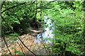 ST1797 : River Sirhowy shimmering in sunlight by M J Roscoe