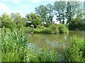 TQ0212 : Amberley Castle - The main pond by Rob Farrow