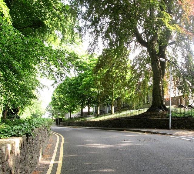View North along Towerhill Road