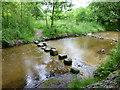 SK0097 : Stepping stones cross a feeder channel for Arnfield Reservoir by Raymond Knapman