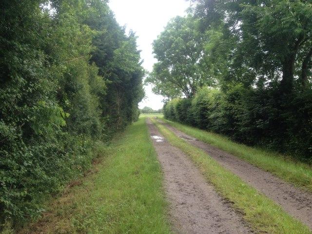 Towards Tadlow Bridge
