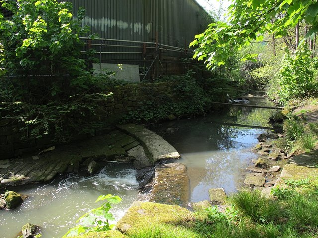 Dirty water, Oil Mill Beck