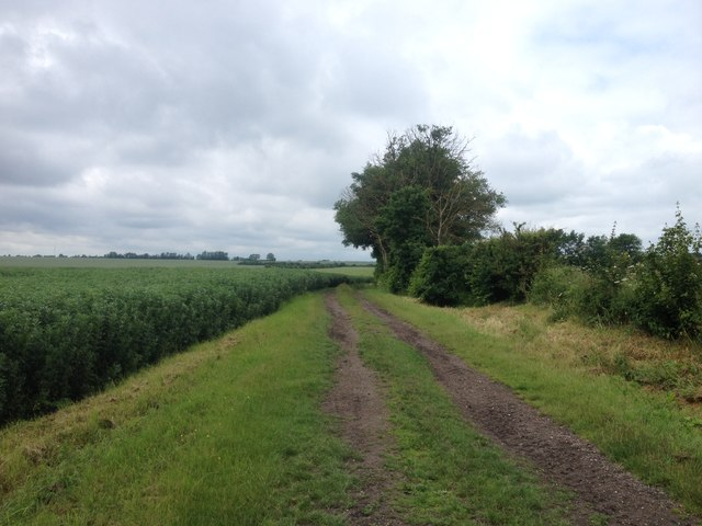 Towards Tadlow