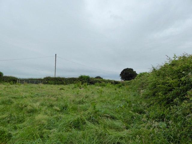 Footpath to field corner near Audley