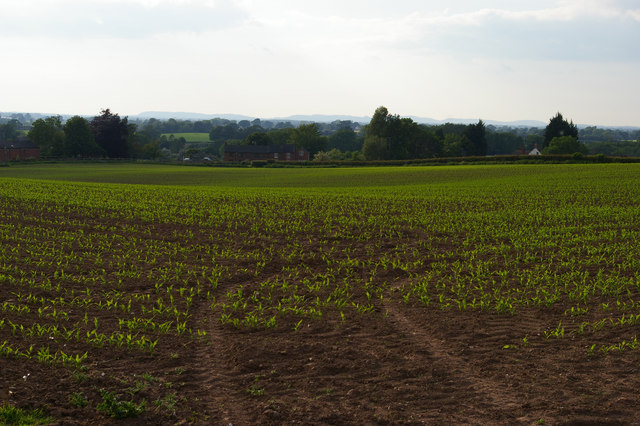 View towards Swanbach from Bagley Lane