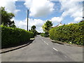 TM0651 : Tye Lane, Willisham by Adrian Cable