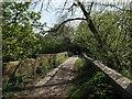 SE2236 : Old Calverley Bridge by Stephen Craven