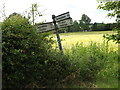 TM0846 : Roadsign on Tye Lane by Adrian Cable