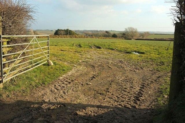 Field by Herdicott Cross