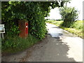 TM0846 : Tye Lane & The Green Victorian Postbox by Adrian Cable