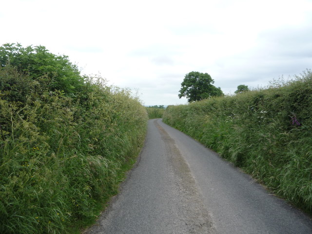 Lane heading south west from Little Bampton