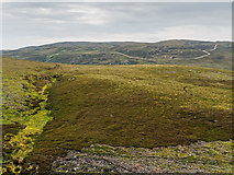 NH7025 : Glenkyllach Forest Grouse Moor by valenta